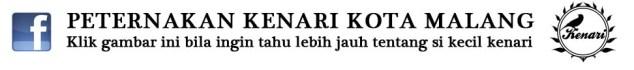 KENARI